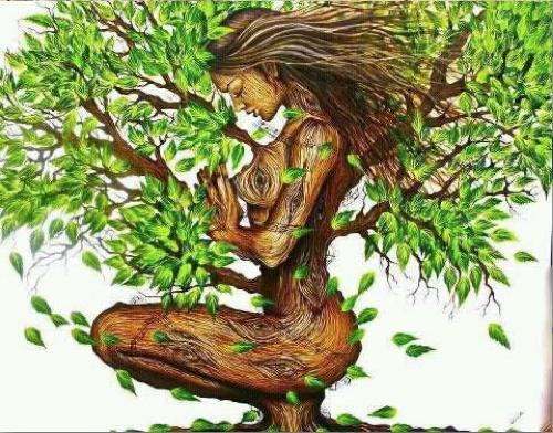 Kundalini Len duchovné príčiny chorôb trošku inak nordic interior and ayurveda