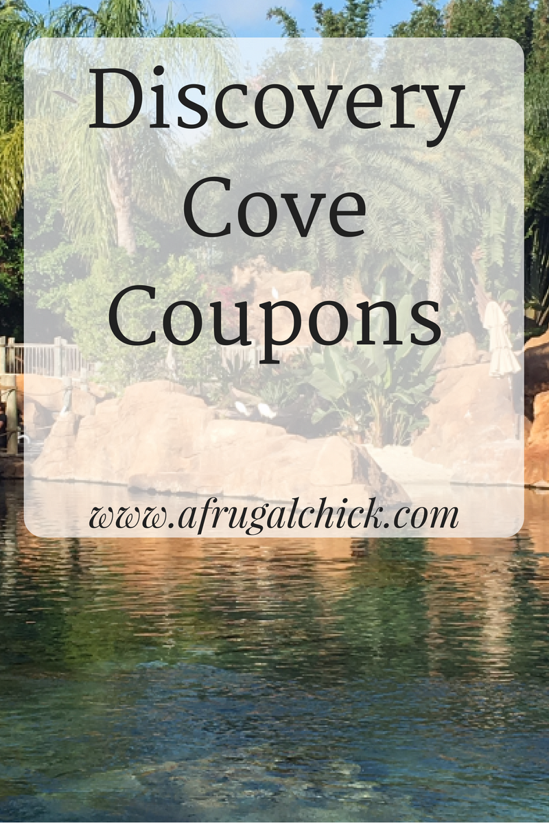 Discovery Cove Coupons- Save On An All-Inclusive Day In