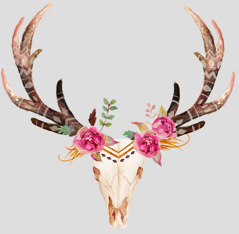 Flower Deer Skull Skull Painting Skulls Drawing Deer Skull Tattoos