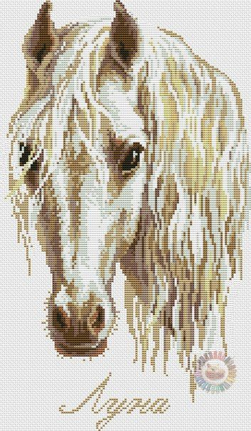 Pin de Maria Garrido en animales   Pinterest   Patrón de caballo ...