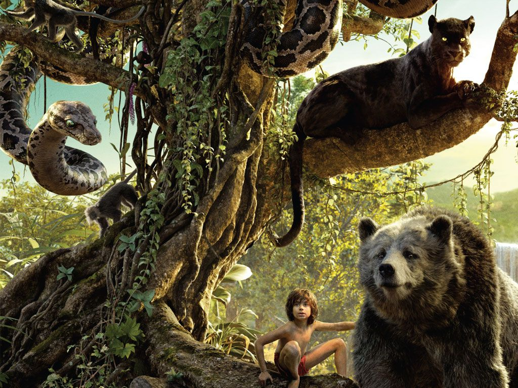 jungle book wallpaper | wallpapers | pinterest