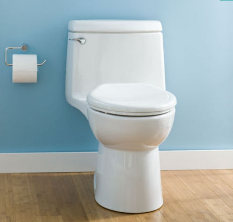 American Standard Champion 4 Everclean One Piece Toilet