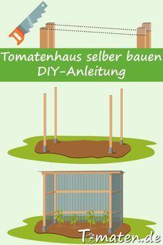 Tomatenhaus selber bauen: Bild 5