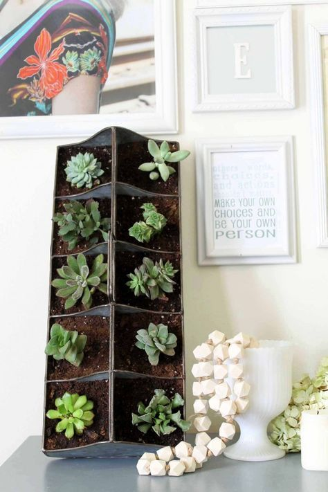 A Vertical Succulent Garden Can Be Propped On A Table Or Hung On The Wall.  (Photo Courtesy Of Angie Holden/The Country Chic Cottage)