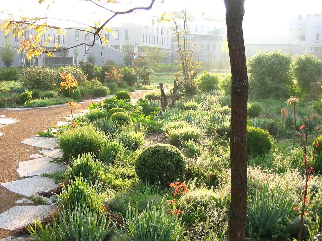 Ecole Paysagiste Lyon se rapportant à ecole normale supérieure (lettres) de lyon , 5 hectares, gerland