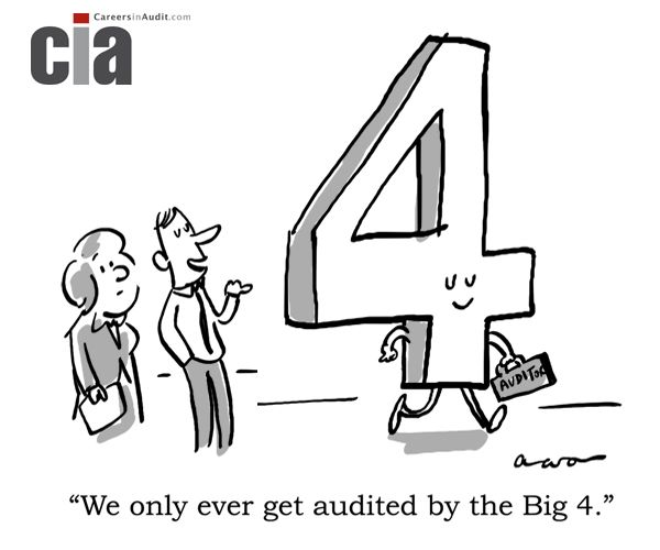 Audit Cartoon  Big   Audit Cartoons