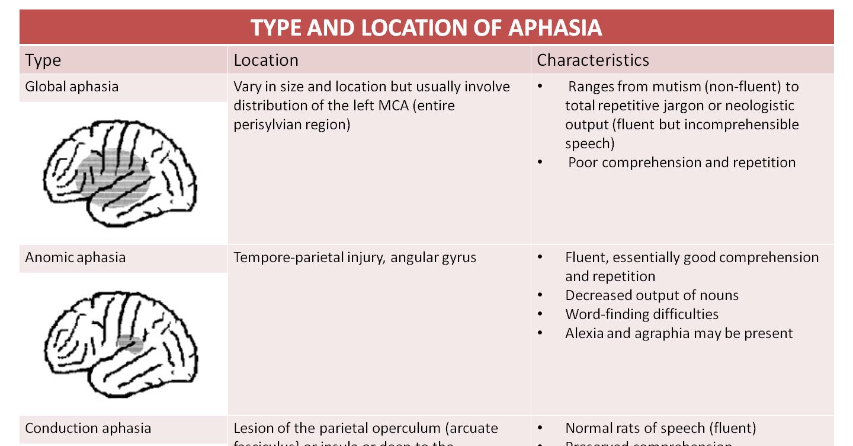 Type Location Amp Basic Characteristics Of Aphasia Cheat