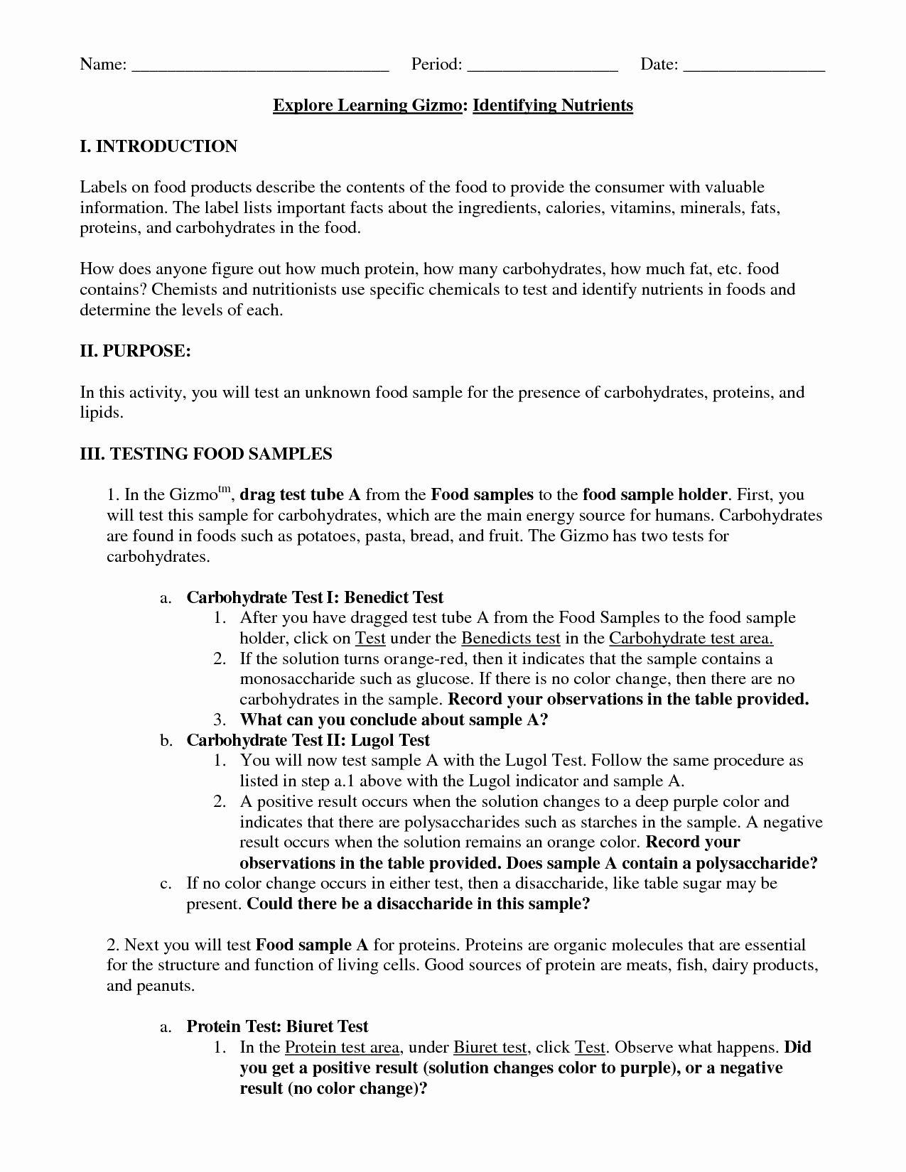 Macromolecules Worksheet Answer Key Beautiful 12 Best Of