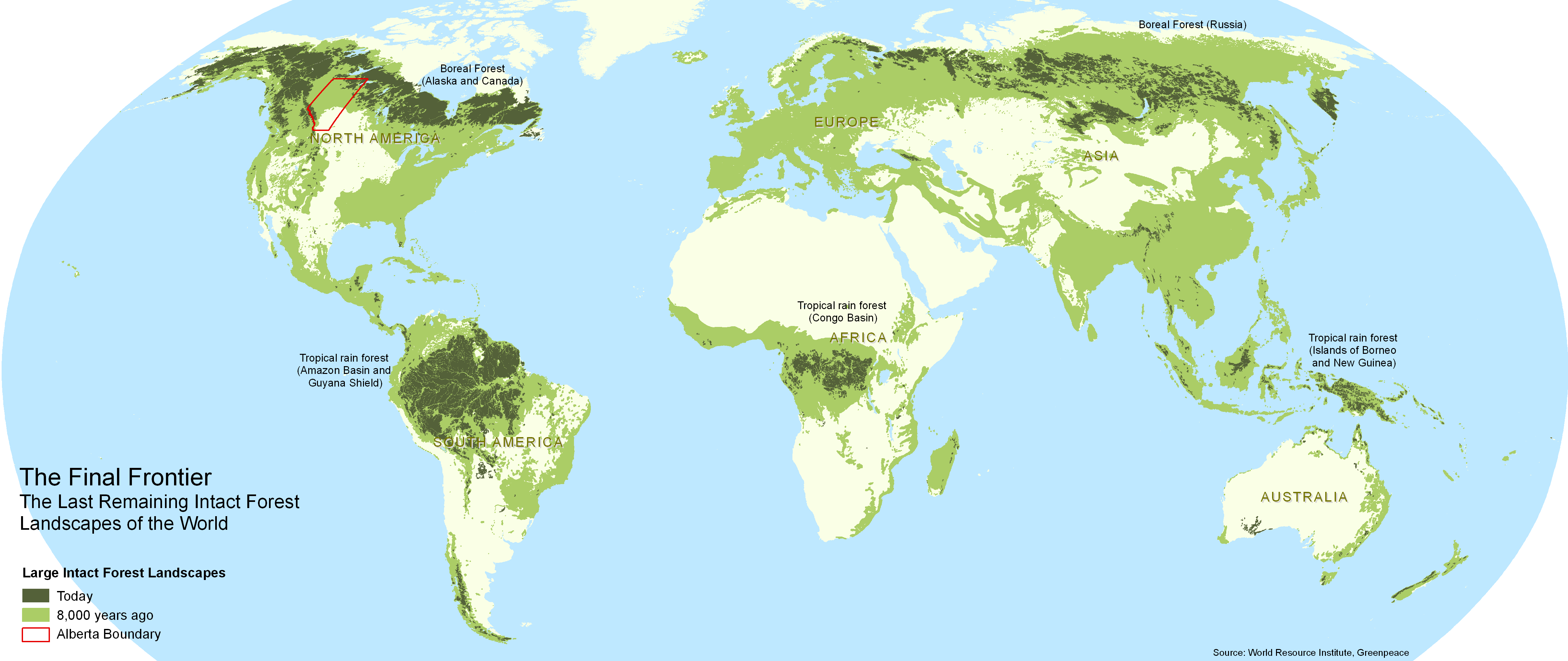 Old growth forests are increasingly rare 80 of the world for Global shows