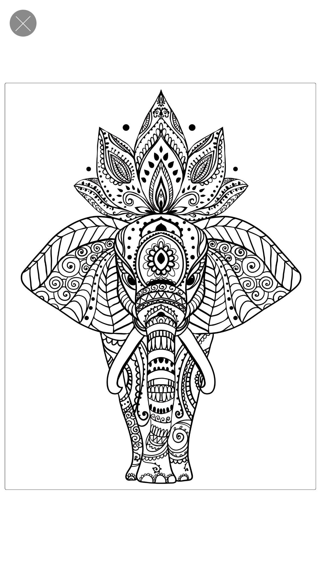 Pin de manuela en amor | Pinterest | Elefante mandala, Zentangle y ...