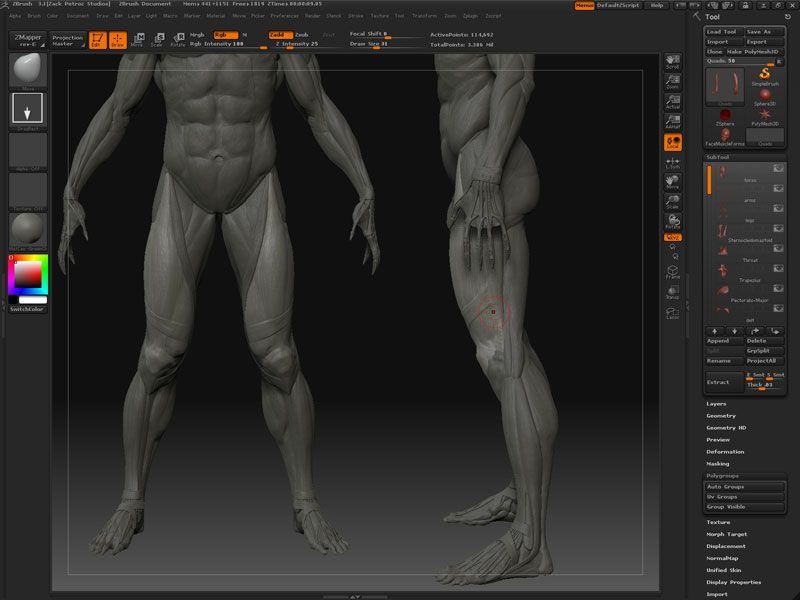 The Gnomon Workshop - Digital Sculpting and Anatomy ZBrush ...
