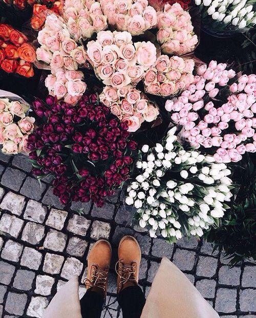 Pinterest/ @Itsjustbxth - petals