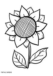 Girasoli Da Colorare Scoprite I Disegni Di Disegno Di Girasole
