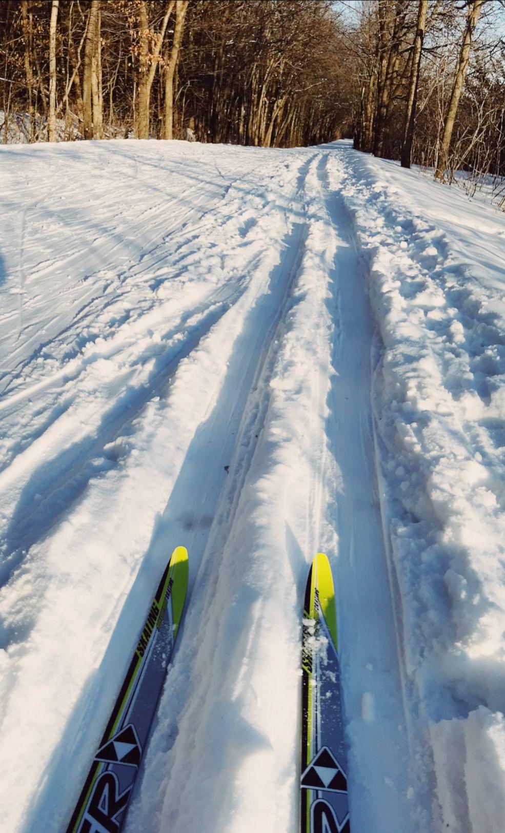 Carver County Park Mn Ski Trail Ski Nordic Crosscountry Ski Trails County Park Skiing