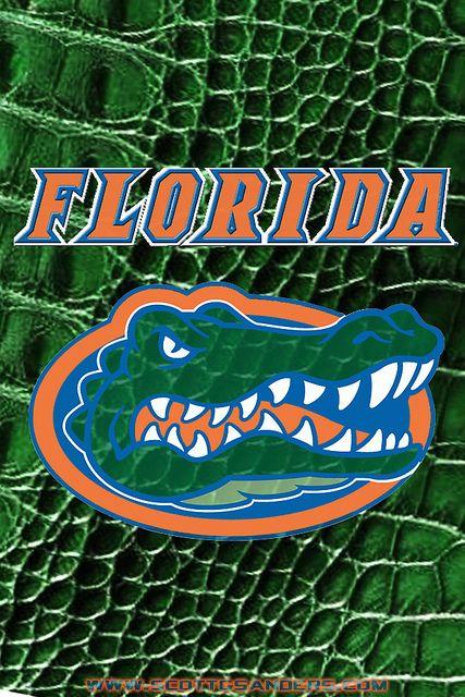 Florida Gators iPhone 4 Wallpaper Wallpaper, Gator
