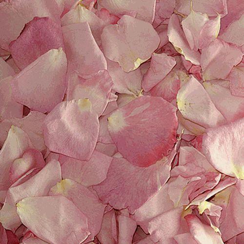 Freeze Dried Rose Petals Vs Fresh