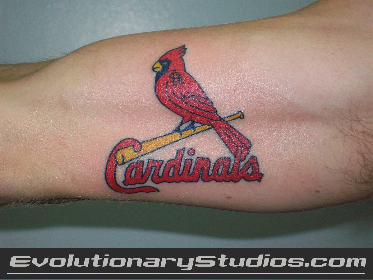 St louis cardinals tattoo body modification pinterest for Tattoos st louis