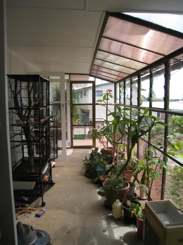 Homes With Indoor Aviary Google Search With Images
