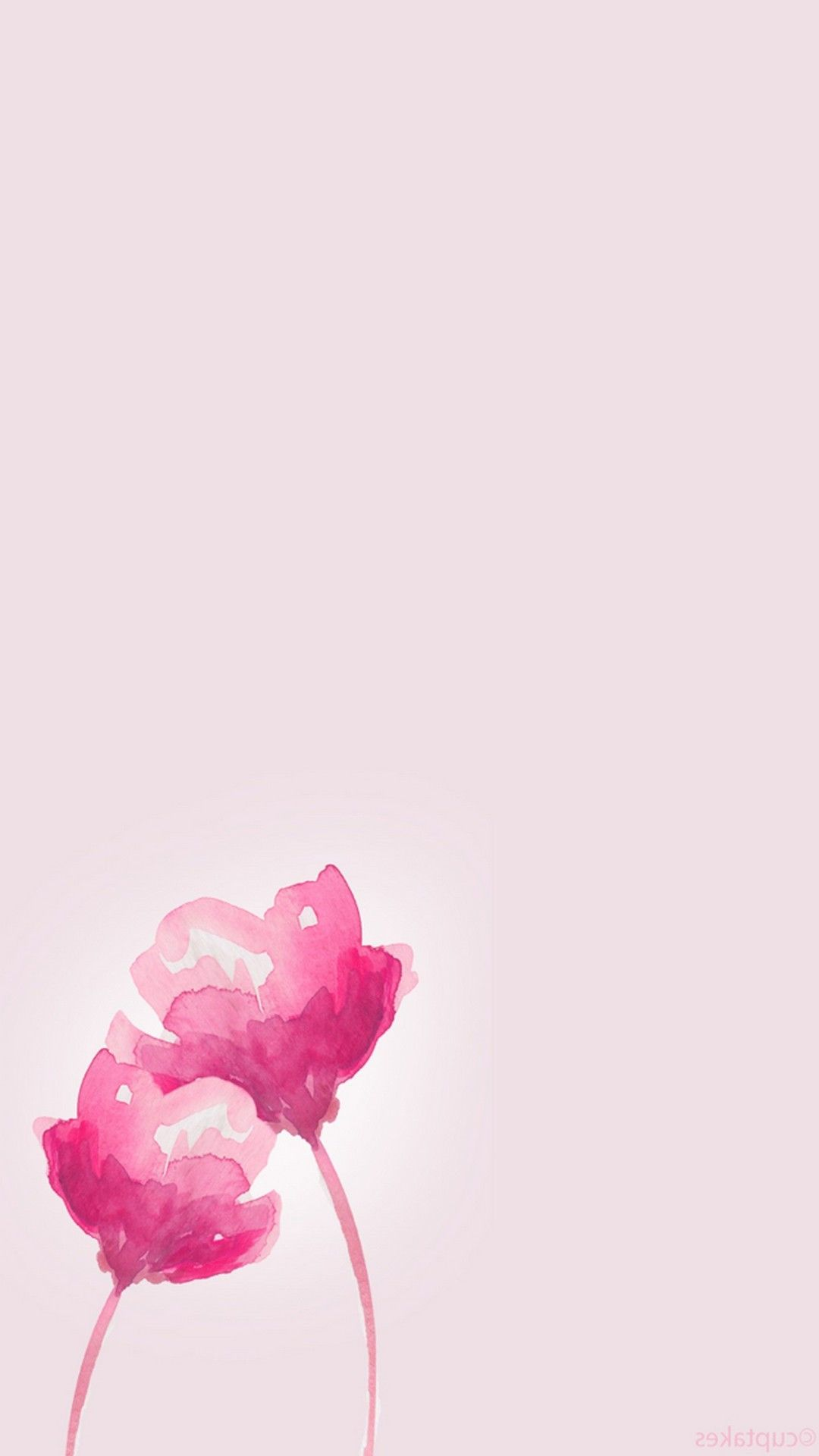 Animated Pink Flower Wallpaper With Images Pink Flowers