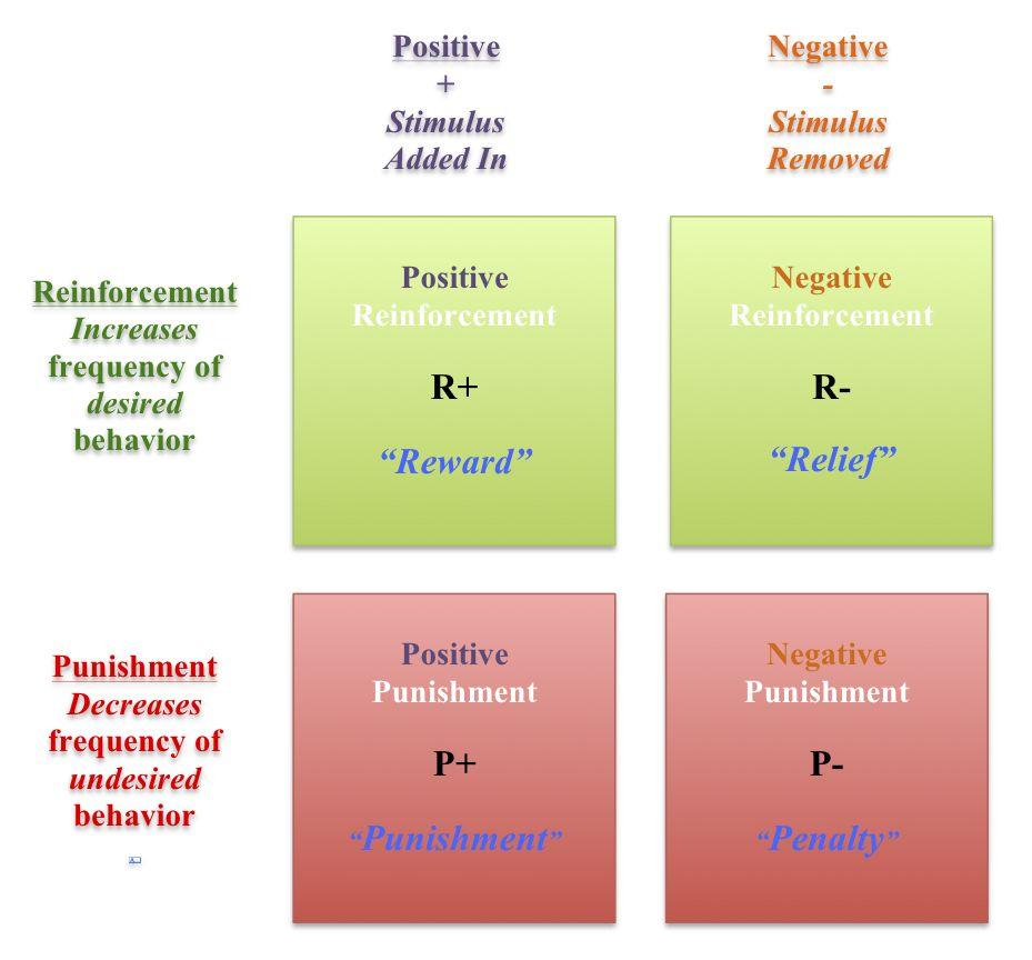 Positive Negative Reinforcement Google Search Aba Pinterest