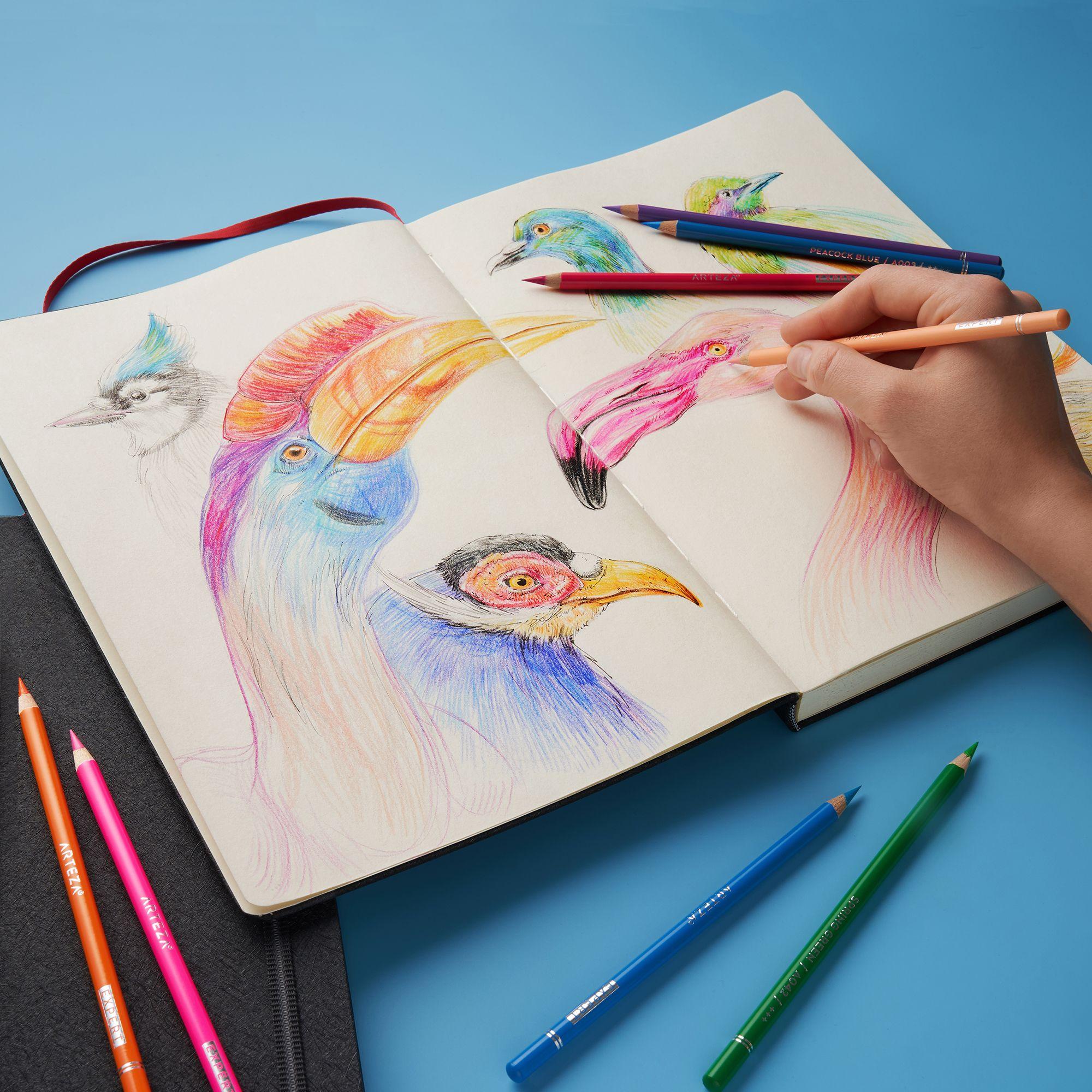 Professional Watercolor Pencils Set Of 72 Watercolor Pencils