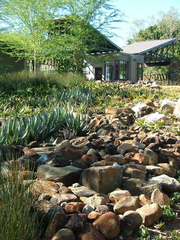 Stunning South African Indigenous Landscaping