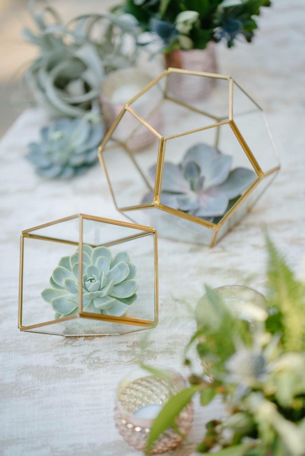 Love these succulents! Geometric terrarium wedding