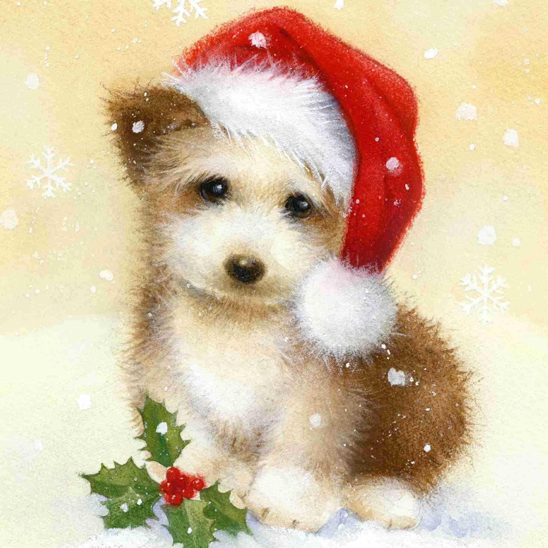 Открытка распечатать, открытка с собаками на новый год