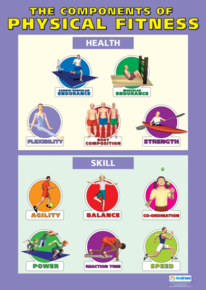 5 Components of Fitness Posters | The Components of Physical ...