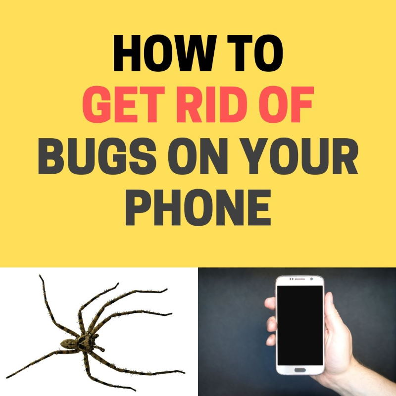 6f33c288f5f05c914e4d7f69be4e7359 - How To Get Rid Of Chiggers In Your Bed