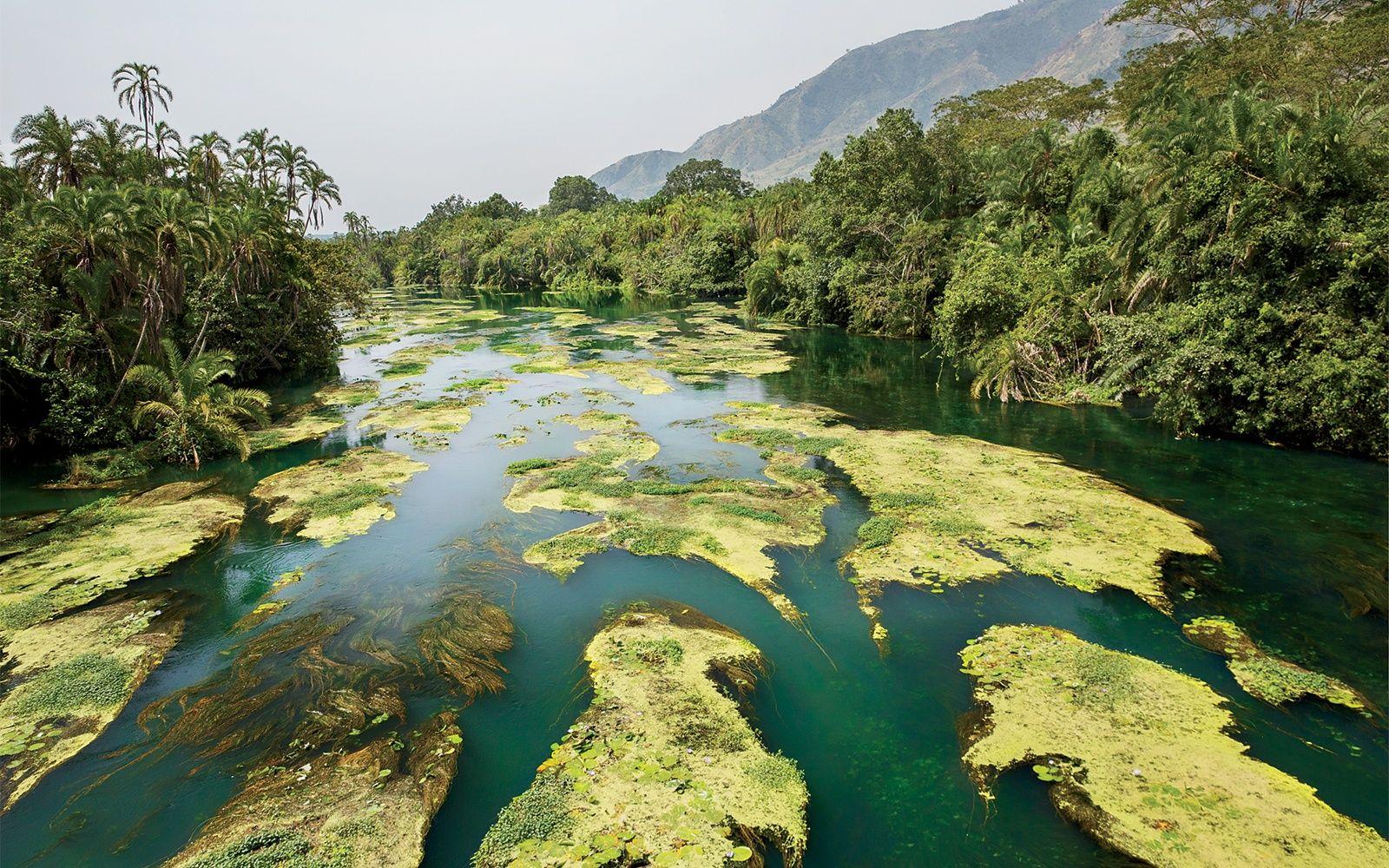 Africa Map Congo River%0A   Parque Nacional Salonga  Maniema e Kivu do Sul  Rep  Dem  do Congo    UNESCO  Africa  East and Central    Pinterest   Congo and Africa