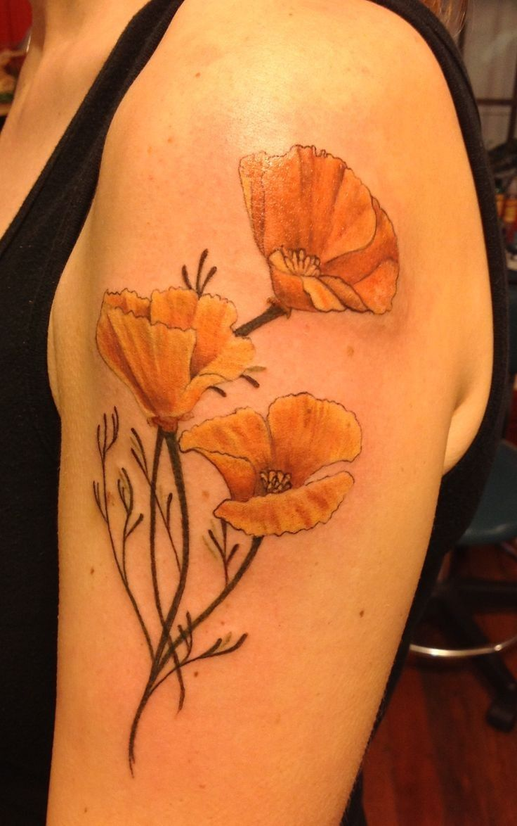 Art Nouveau Inspired California Poppy By Mason Larose: Pin By Kasia Hart On Tattoo Ideas