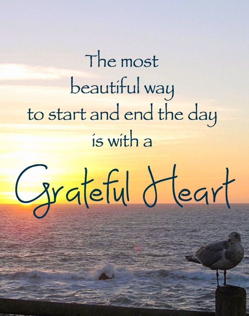 Choose to Be Thankful with these Grateful Heart Quotes