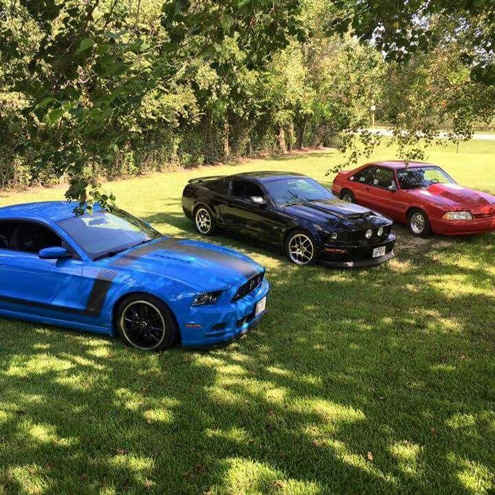 Mustangers