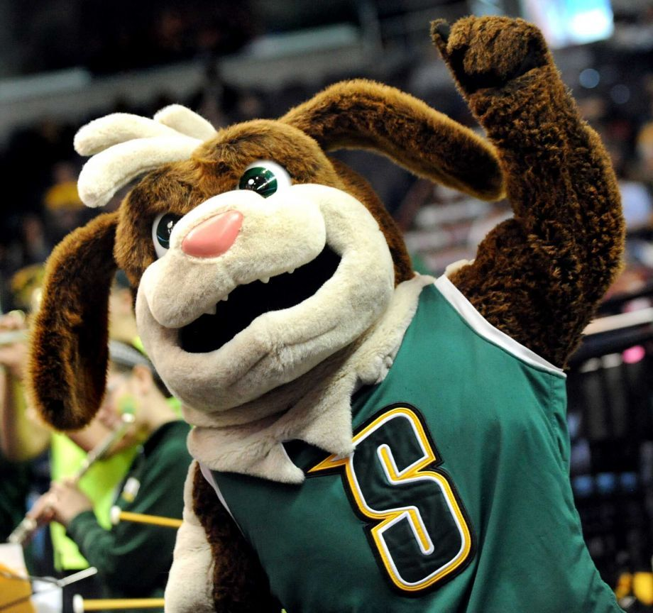 Top 5 Dog Breeds That Serve As Team Mascots Pet Insurance U Dog Breeds Top Dog Breeds Team Mascots