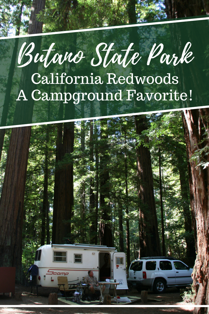 Butano State Park Campground Is A Beautiful And Peaceful