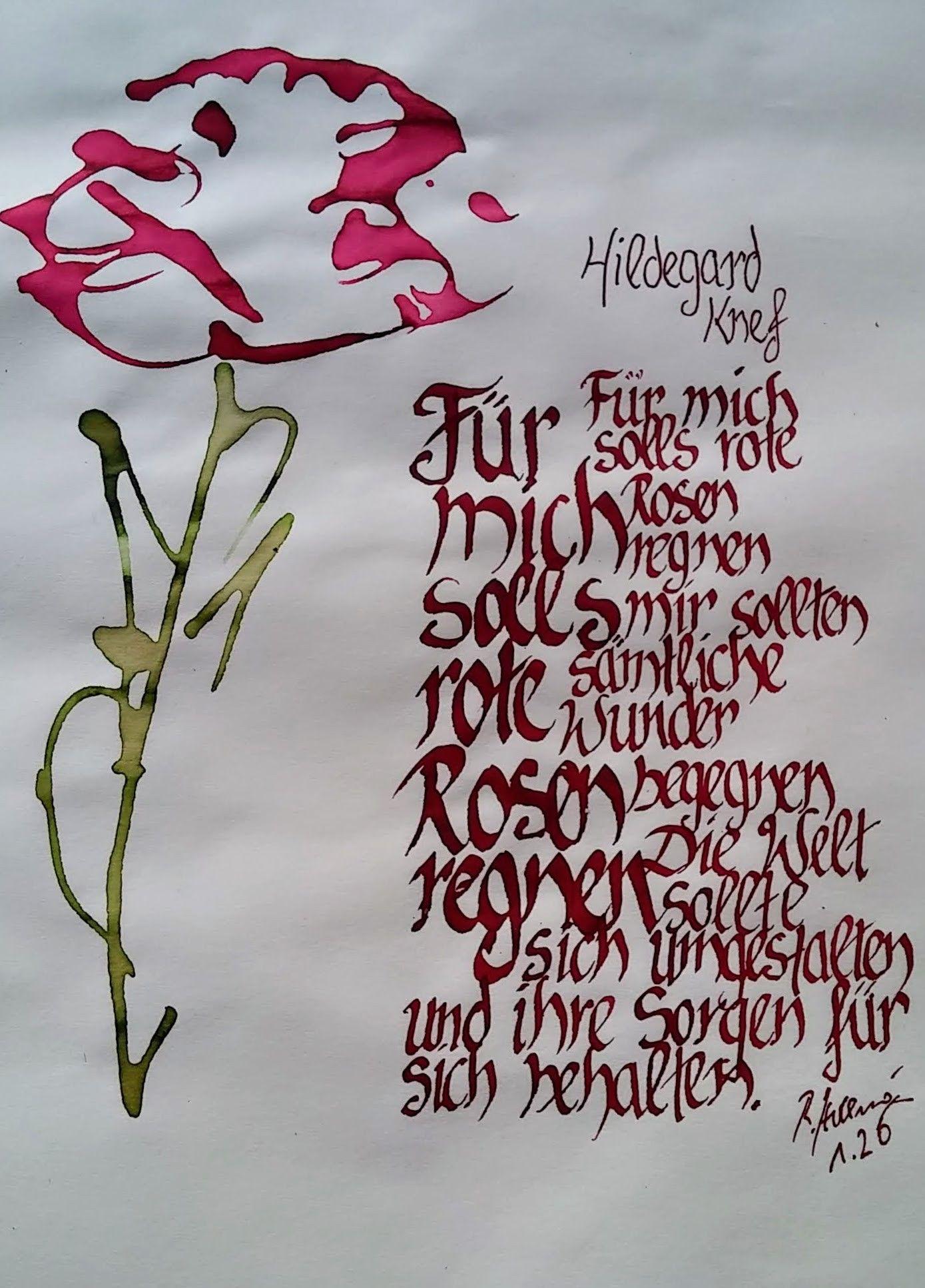 knef rote rosen text