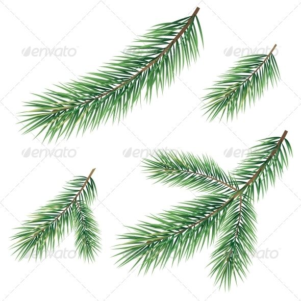 Branches Of A Christmas Tree Tree Branch Tattoo Christmas Tree Set Branch Drawing