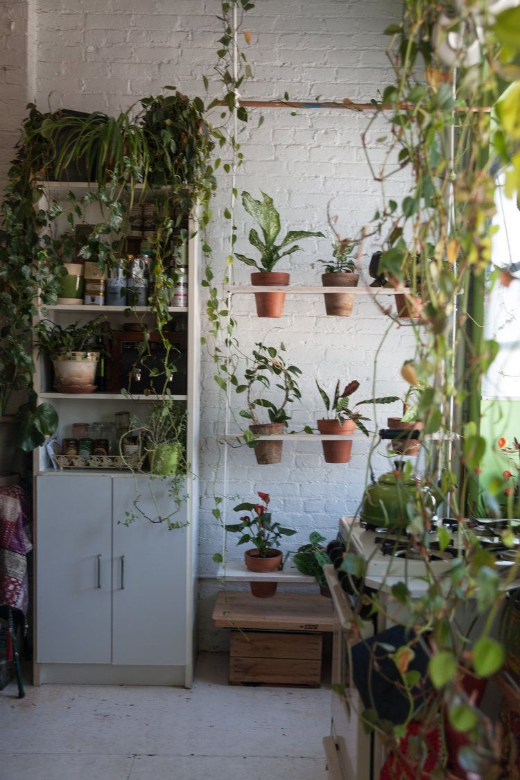 A look at the vertical swing garden a year later i moved some of