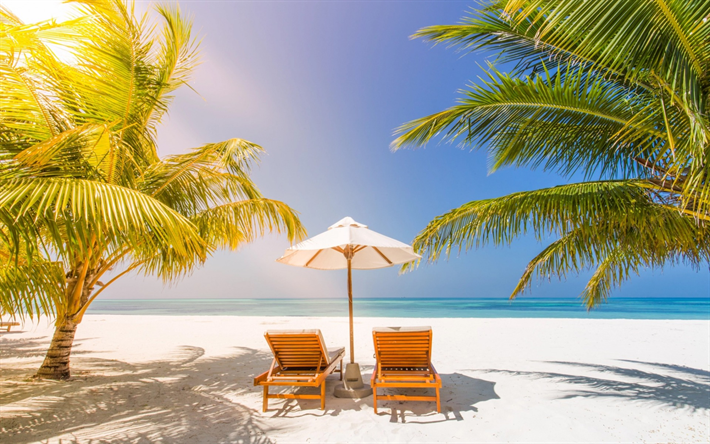 Download Wallpapers Beach Chairs Tropical Island Palm