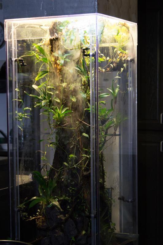 U Jelly 115gal Vertical Tree Vivarium Vivarium Reptile Terrarium Terrarium