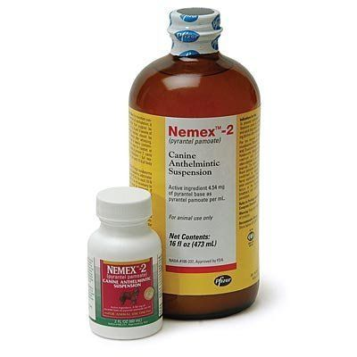 Nemex 2 Dewormer For Dogs Puppies Hookworms In Dogs Dogs And