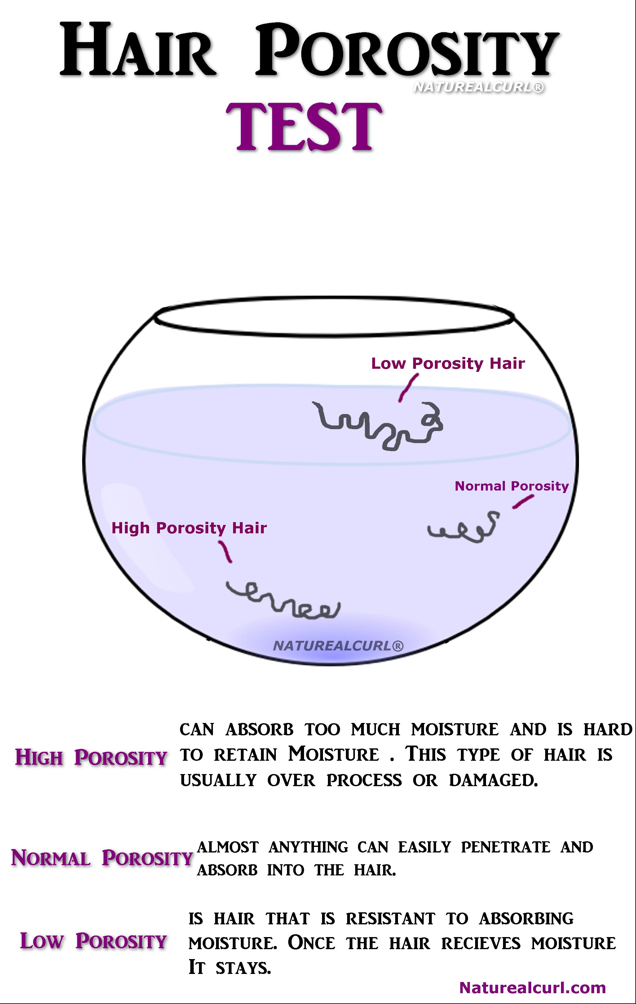 Test For Natural Hair Porosity