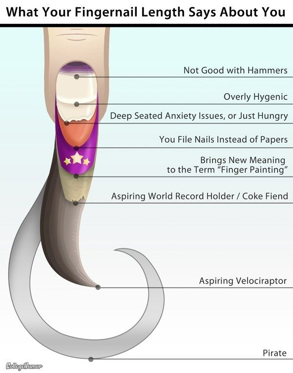 What your fingernails say about you #Humor | NAILS. NAILS. NAILS ...