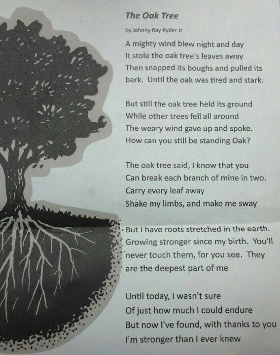 Pin By Jill Crotts On Poems Tree Quotes Recovery Poems Poems