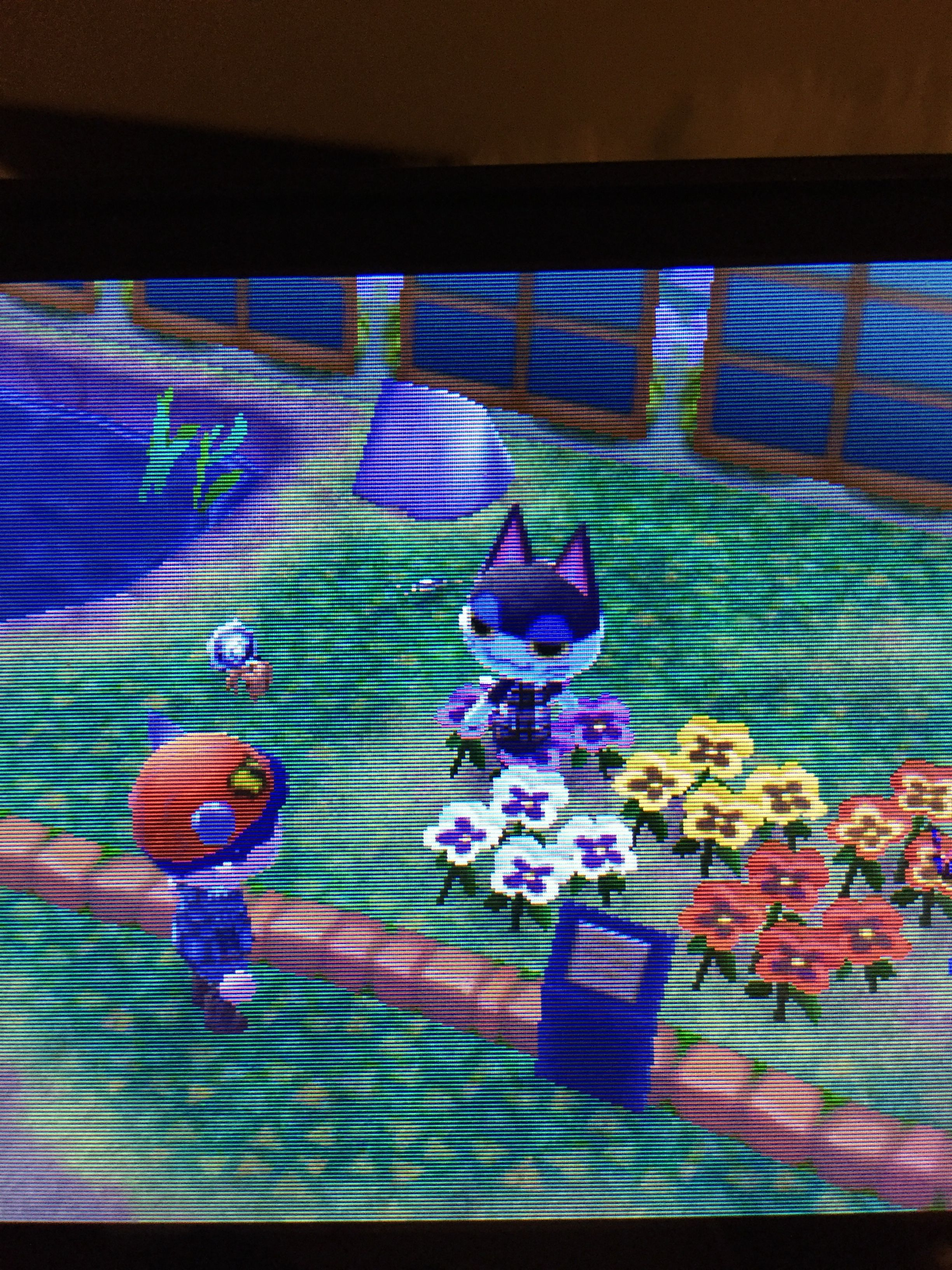 16+ How to add a friend on animal crossing ideas