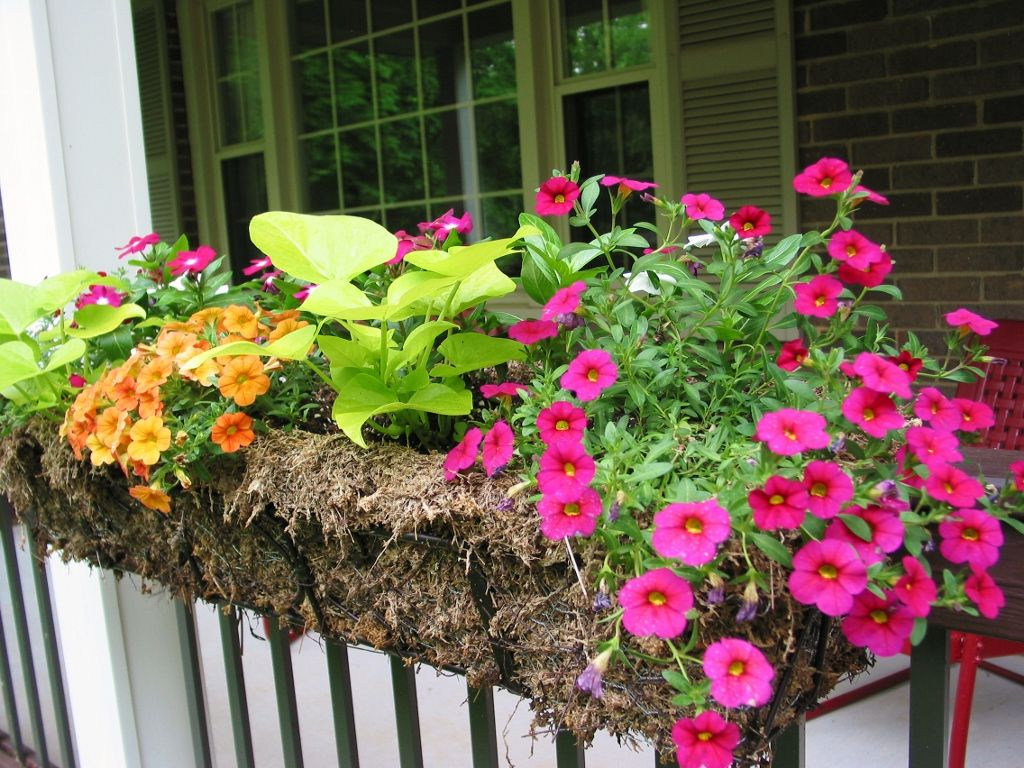 Beautiful railing planters for your fence or deck railing