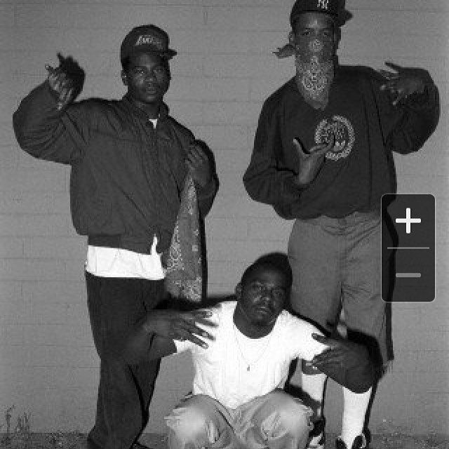 the crips living outside the laws of society Gangs from different sociological perspectives and theories  in today's society,  sell drugs to make a living shows a sign that the actors are conscious of.