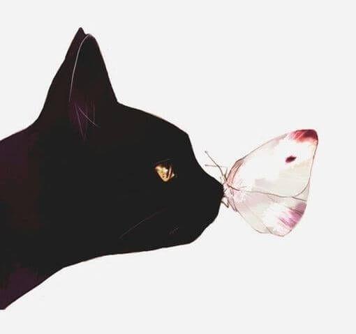 El tiempo pasado con gatos nunca es tiempo perdido