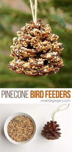 How to Make Pinecone Bird Feeders - One Little Project